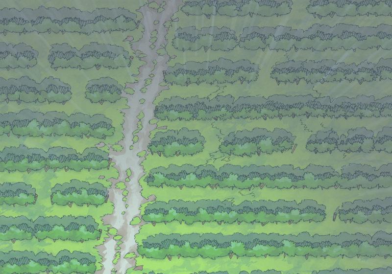 Vineyard (23x16) Rain, Day