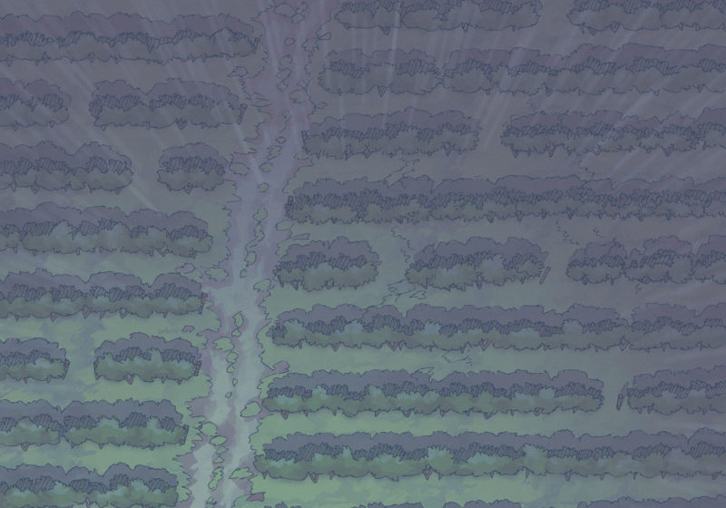 Vineyard (23x16) Rain, Night