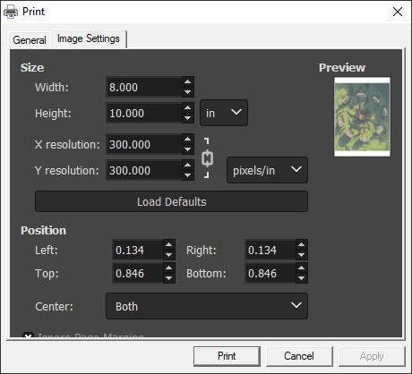 GIMP print settings