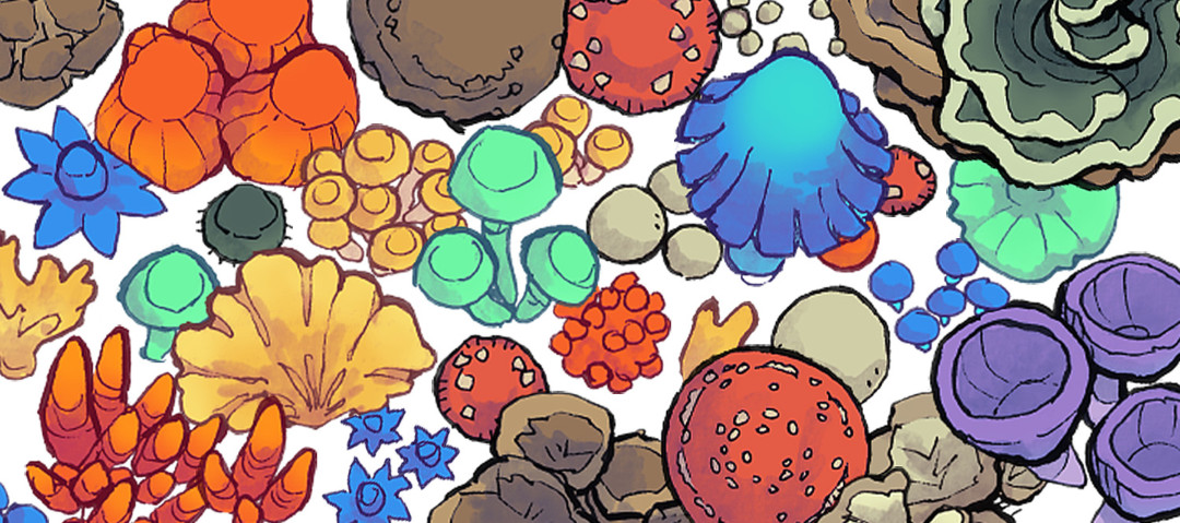 Forest Fungi Map Assets - Banner
