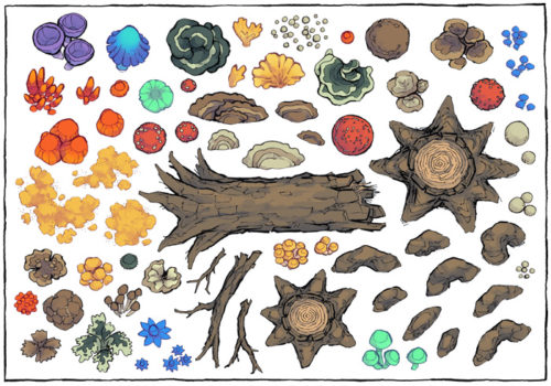 Forest Fungi Map Assets - Contents