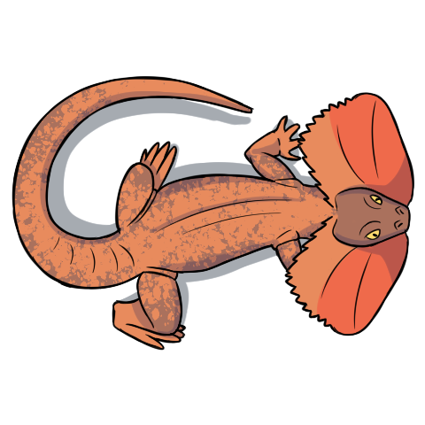 Giant Frilled-Neck Lizard character token