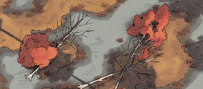 Dusnak Swamp Adventure - Banner - Brackish Marsh