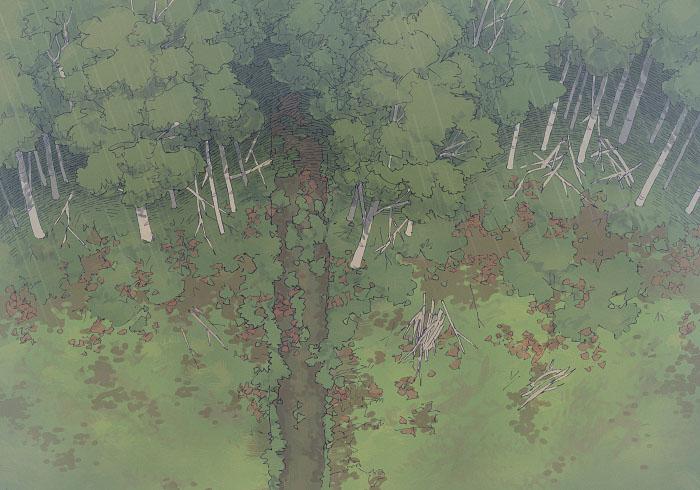 Edge of the Woods - Rain - 22x16