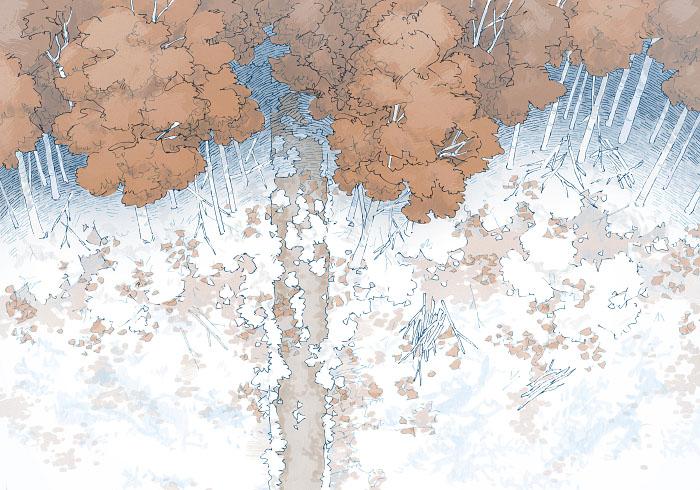 Edge of the Woods - Winter - 22x16