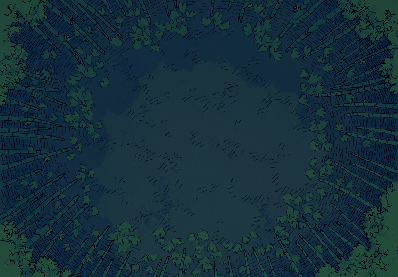Bamboo Glade - Open - Night - 16x22